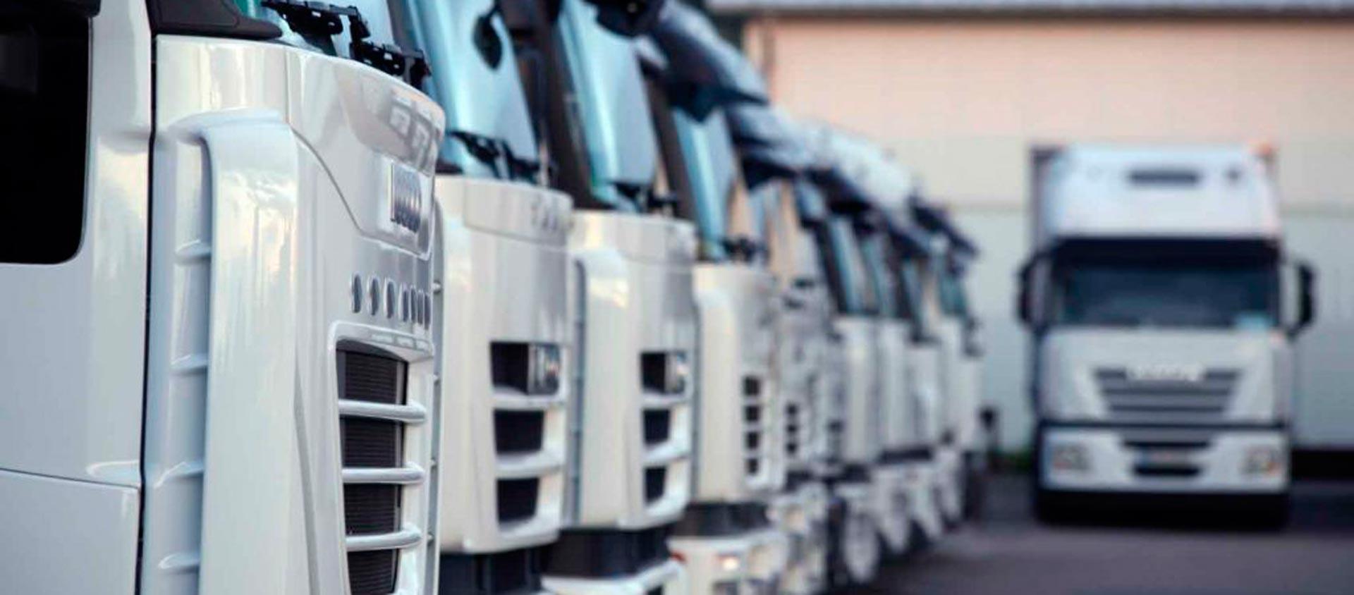 flota-de-camiones-2