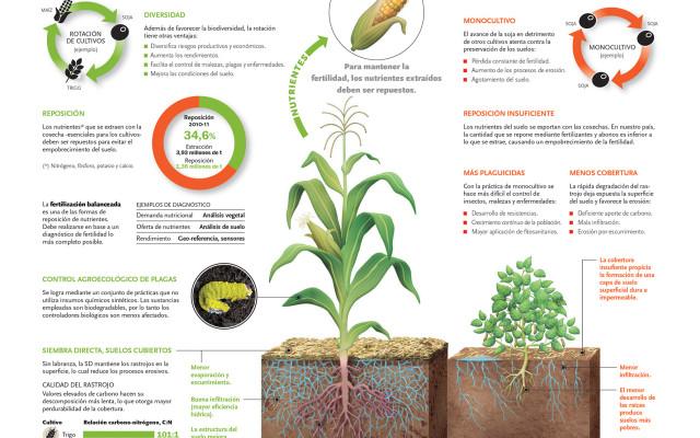Preservación de suelos
